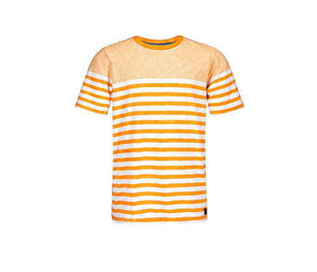 mens striped t shirts exporter in tirupur